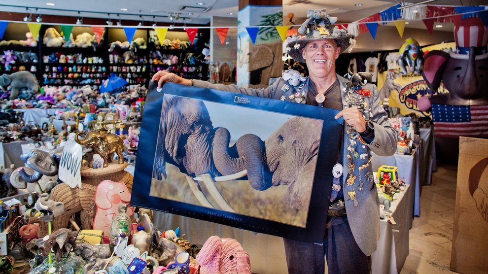 Largest collection of elephant memorabilia: Andy Swan sets ...
