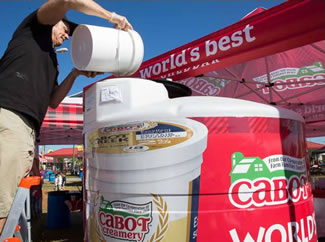 The World's Largest Smoothie used more than 250 gallons of Cabot Vanilla Bean Greek Yogurt, 2,000lbs of fresh Florida strawberries; 3,375lbs of ice and 265lbs of Cabot Whey protein powder.