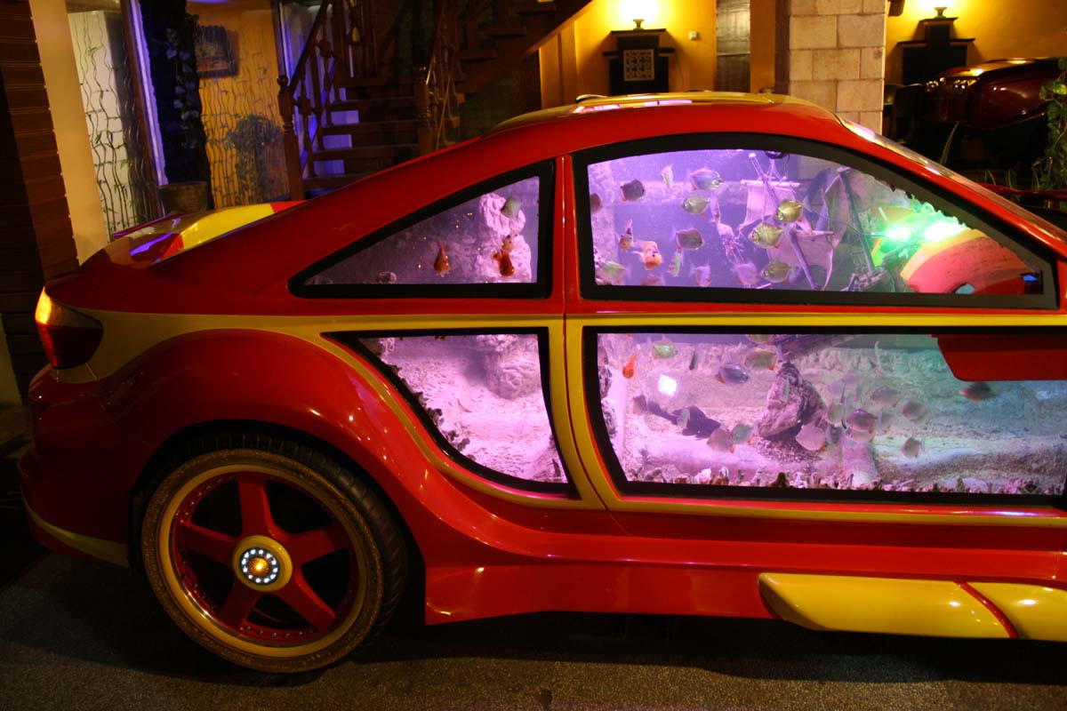 Most Cars On Display In A Restaurant Dream Cars