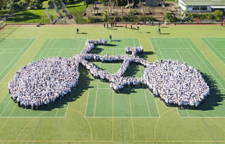 A group of 1799 school children, teachers and parents claimed the World Record title for the 'largest human image of a bicycle' at Glen Eden Intermediate on 9 June. The entry saw kids, parents and teachers create the shape of a bicycle and hold their position for five minutes on the school sports turf.