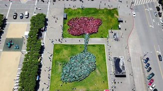 The record-breaking accomplishment organized by the Asian Art Museum saw 2,405 people flock to Civic Center and sprout a giant green and pink lotus.