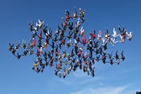 most skydivers in a vertical formation