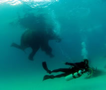 scuba diving in the most countries world record set by Karin Sinniger