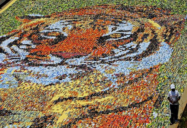 Largest Postcard Mosaic Camford School Students Smash