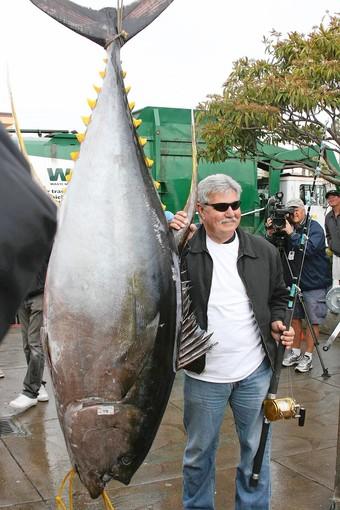 Largest Tuna Ever Caught Michael Livingston Sets World Record