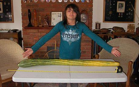 Longest Cucumber World Record Set By Clare Pearce
