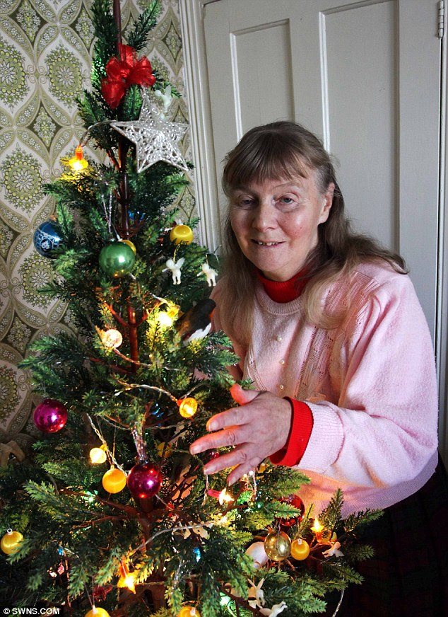(enlarge photo) - Oldest Christmas Tree Lights: 42 Year Old Fairy Lights Sets World Record